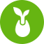 Seedgrowth icon